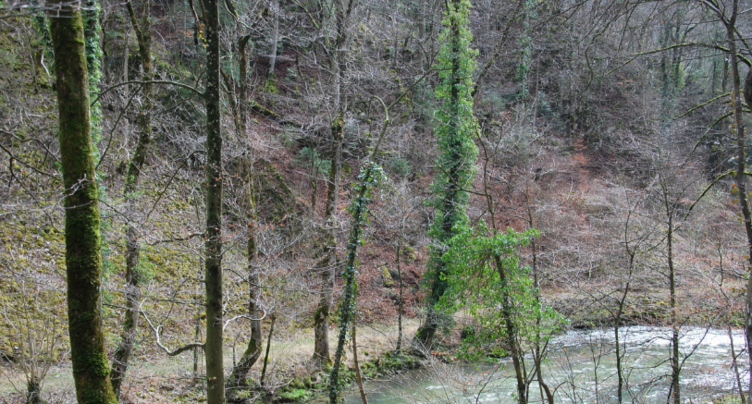Le chemin des Gorges du Taubenloch fermé