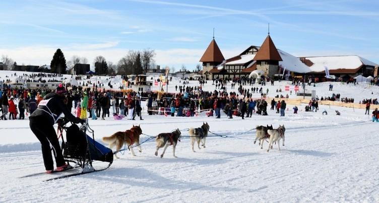 Les courses de chiens de traîneaux de Saignelégier en suspens
