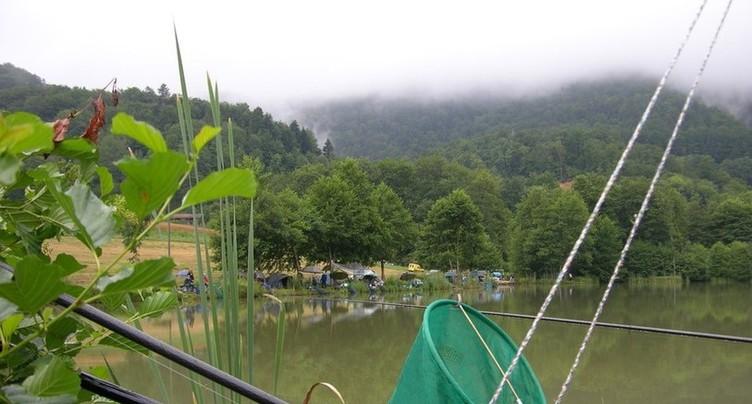 Une pénurie de poissons géniteurs frappe le Jura