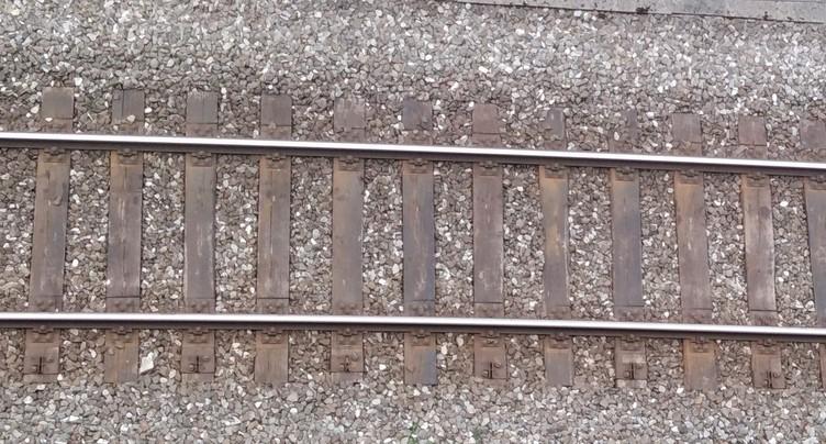 Le trafic ferroviaire a repris sur la ligne Courtelary - St-Imier
