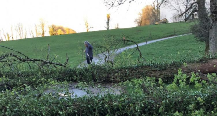 L'orage a fait quelques dégâts dans la région