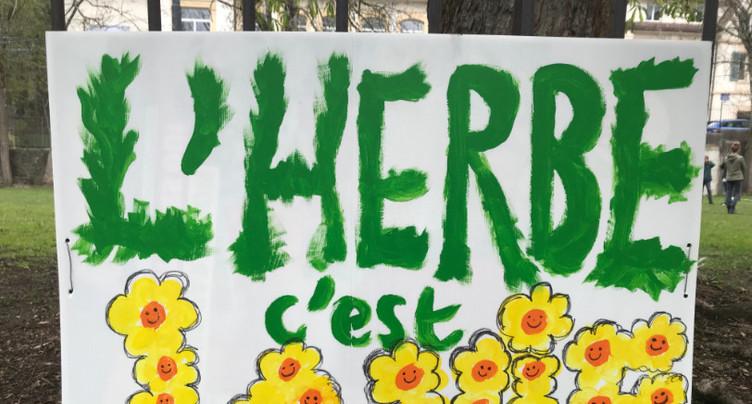 Bois du Petit-château : la Ville et la Tchaux verte vont chercher une solution