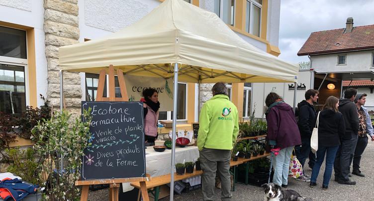Le 2e marché de la permaculture a pu avoir lieu