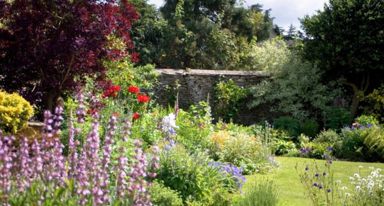 C'est l'été et on jardine sans relâche!