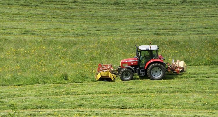 Les fermes isolées face au défi de la canicule