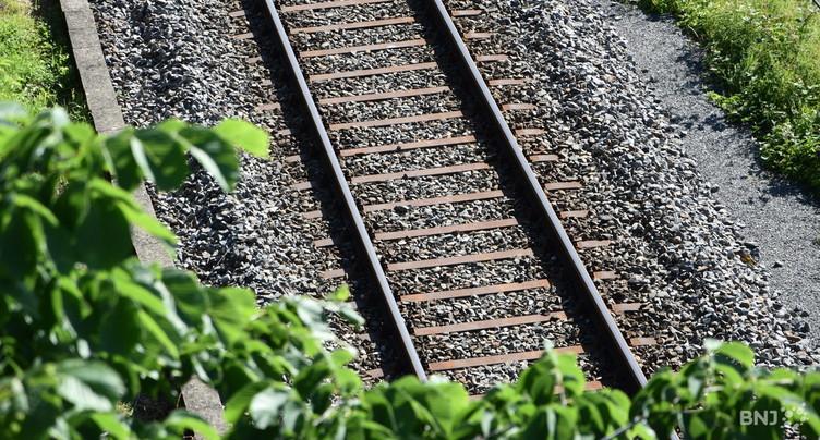 Perturbations sur la ligne ferroviaire entre Delémont et Laufon