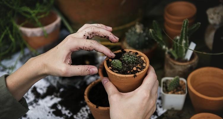 La rentrée des Jardinières