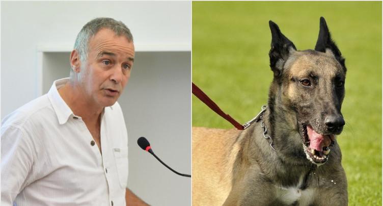 Pour que les chiens obéissent à leur Maître