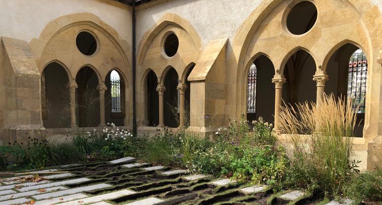 Découverte à Neuchâtel : un vin vieux de 500 ans