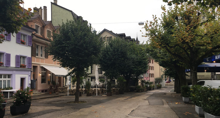 À Delémont, une séance publique pour discuter des tilleuls de la place Roland-Béguelin