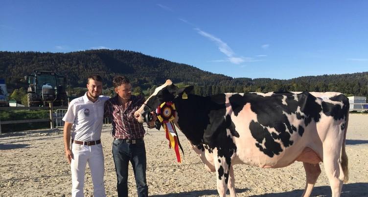 Star Octane est la plus belle vache du Jura bernois