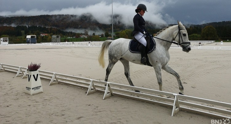 Les as du dressage à Tavannes