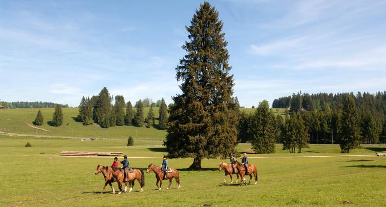 « Tous en selle » remporte un prix du tourisme suisse