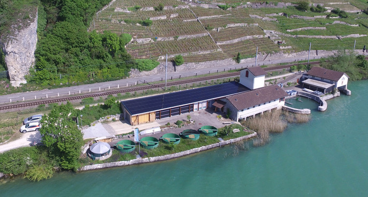 Le « Solaraward » 2019 remis à la commune de Gléresse