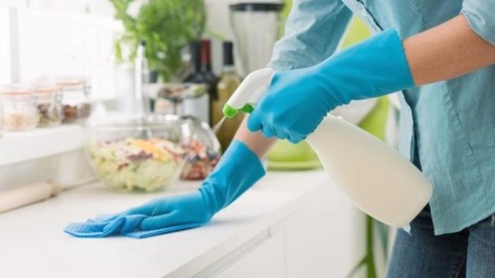 Un contrat-type de travail dans l'économie domestique bernoise