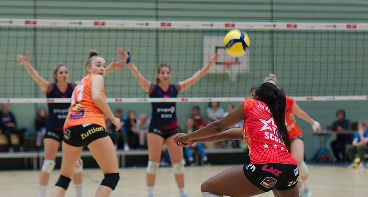 Saison sans champion en volleyball