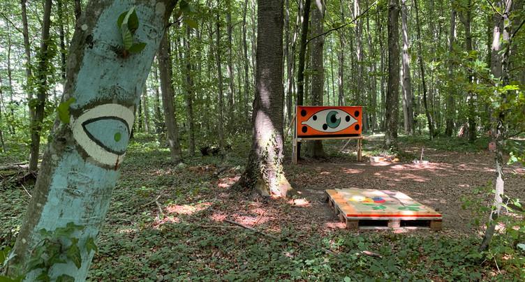 Une forêt mystérieuse qui rouvre ses portes
