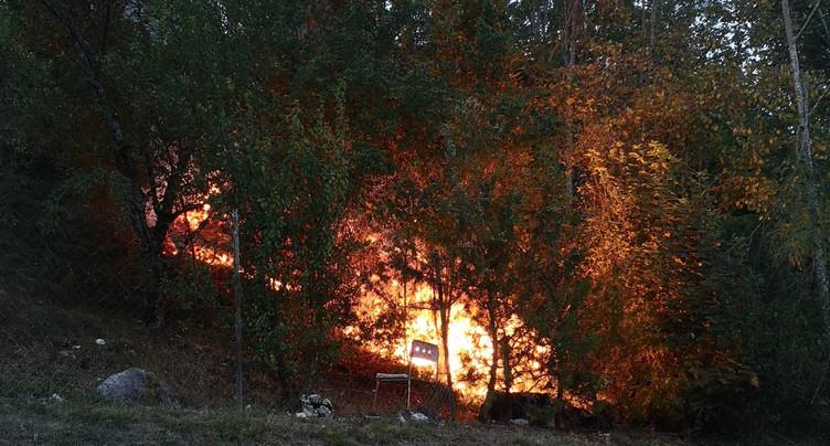 Une négligence cause un feu de forêt à Porrentruy