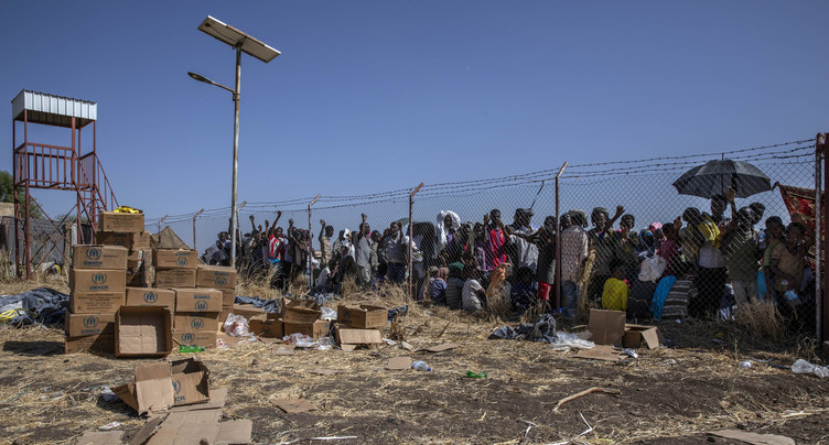 Le monde en cause : le conflit éthiopien à la loupe