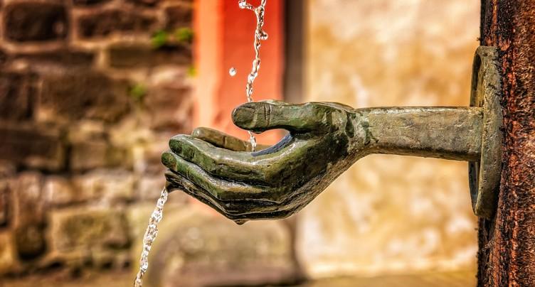 Les Jardinières ne manquent pas d'eau !
