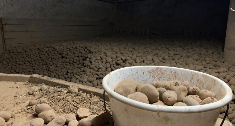Un « signal positif » pour les agriculteurs