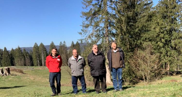 Le concours du pâturage boisé de l'année est lancé