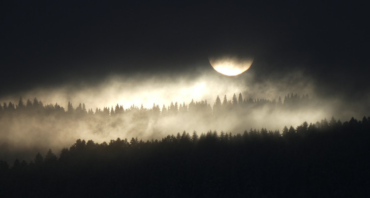 La Fête de la Nature au clair de lune