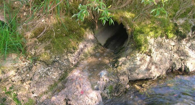 Rejets d'eaux polluées décelées en Ajoie