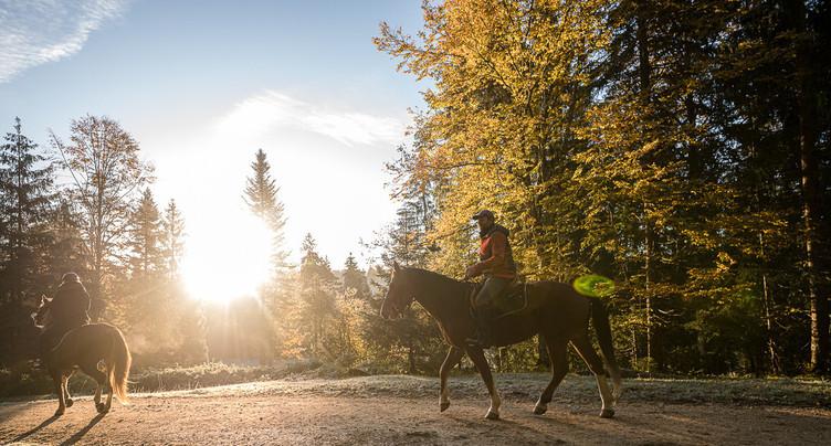 Retour sous le soleil pour le Franches Equi Trail