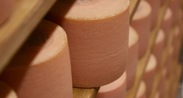 Feu vert pour la nouvelle fromagerie au Noirmont