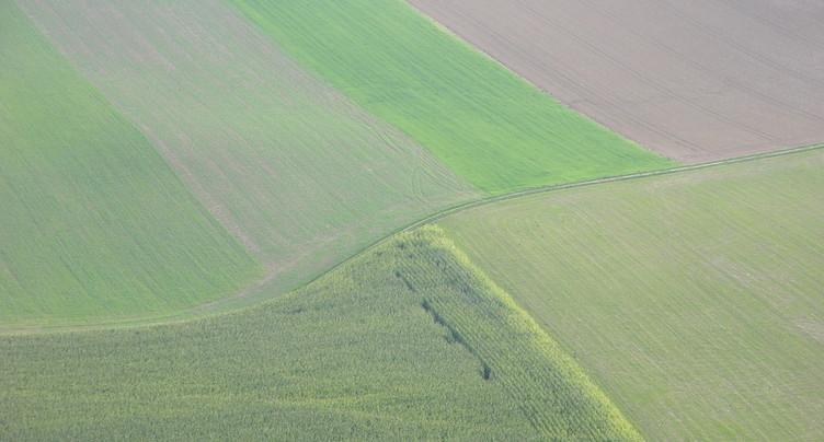 Berne : le projet de protection des plantes gagne en élan