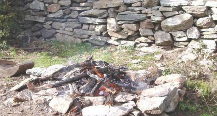 Des grillades causent un feu de forêt