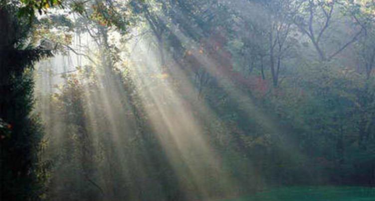 Caritas propose de nouvelles prestations en matière de deuil