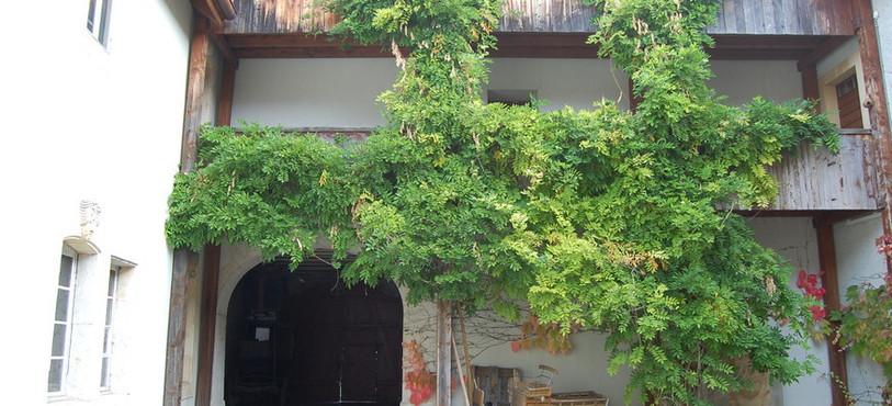 La cour intérieure de la Maison des Mascarons.