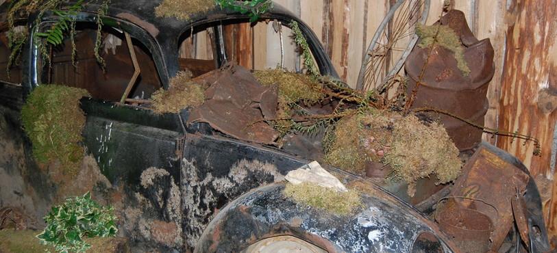 Les voitures sont exposées dans l'état où elles ont été trouvées.