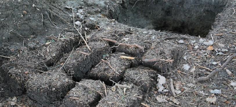 Les chercheurs analysent aussi le sol non-contaminé par les cadavres.