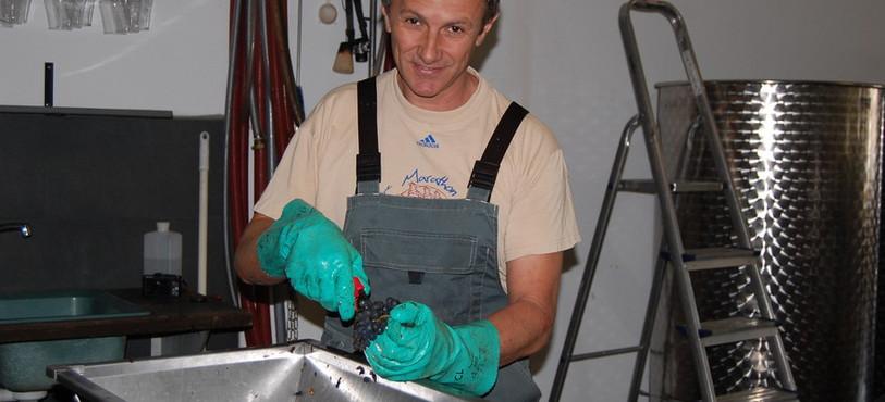 Après la vendange, Christophe Landry doit fouler et égrapper le raisin.