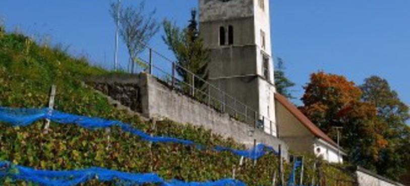 La vigne de Travers est située sous l'église.