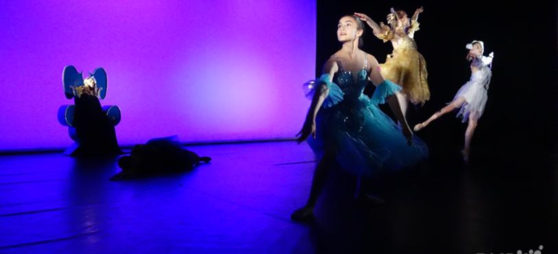 Ecole de Danse Inès Meury-Bertaiola - Le Diamant Bleu