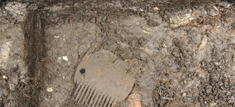 St-Ursanne, Vieille Ville. Peigne en bois lors de sa découverte. Moyen-Age. Photo: OCC-SAP