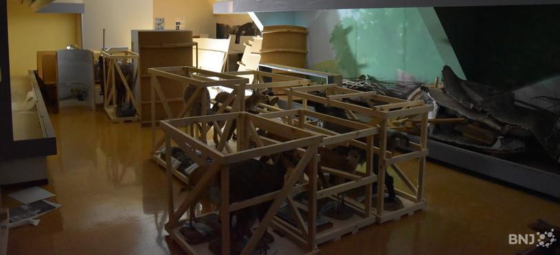 Au premier étage, les vitrines sont vides et les matériaux démontés sont triés.