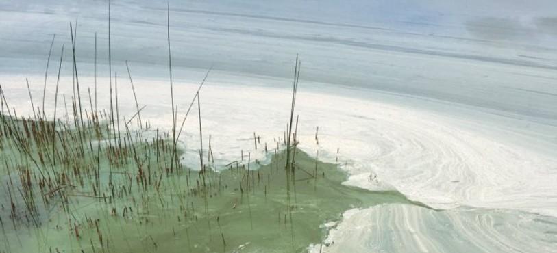 Depuis quelques jours, le Lac des Taillères est recouvert d'une étrange substance.