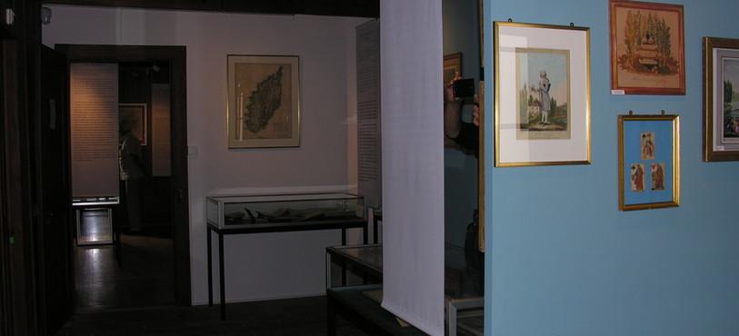 Le Musée Rousseau à Môtiers